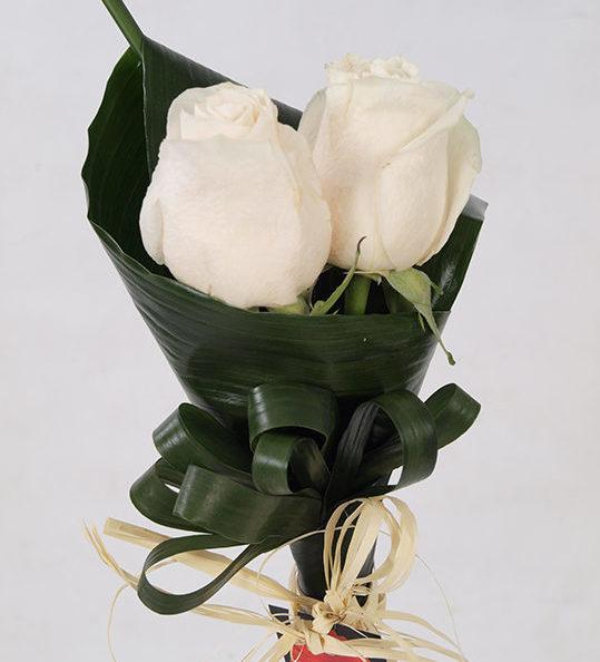 2 Rosas Blancas Flores Dalia