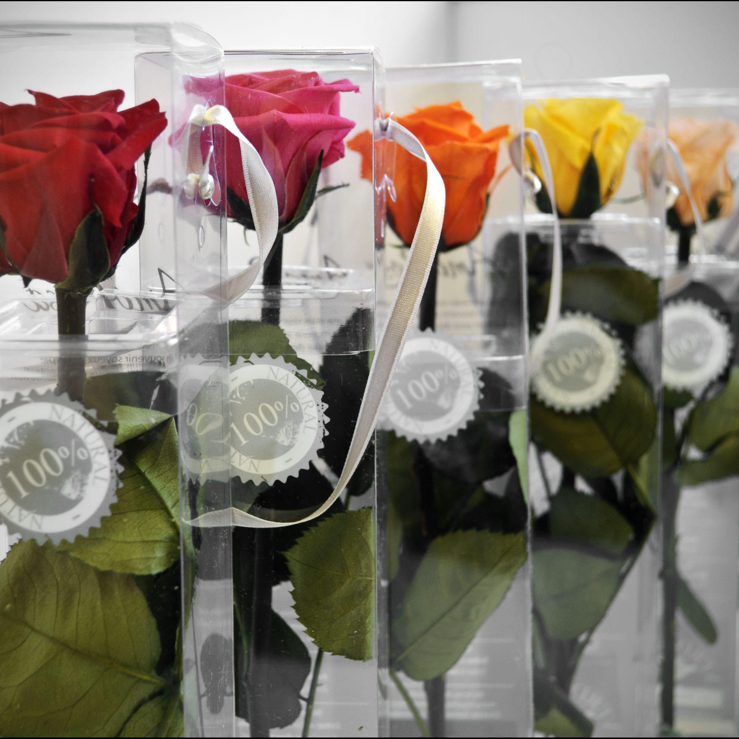 rosas-preservadas-detalle-II