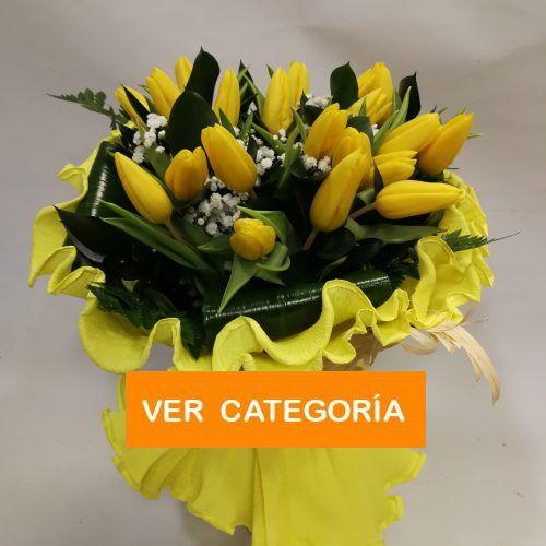 Categoría tulipanes