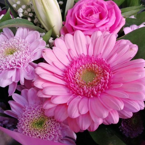 flores color rosa
