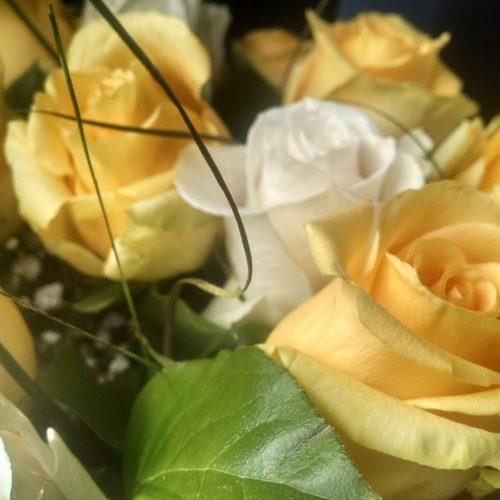 rosas amarillas y blancas