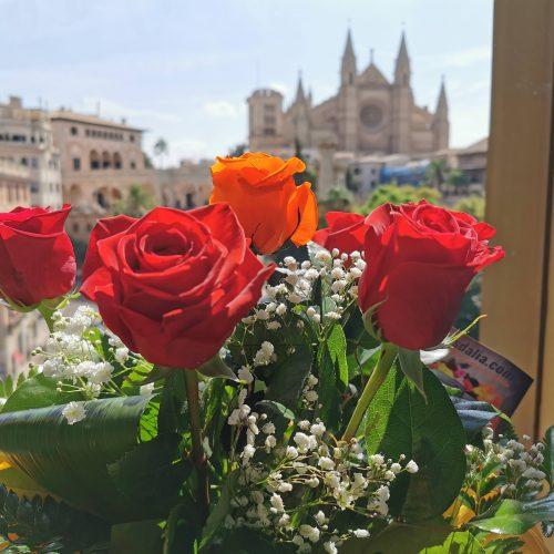 rosas catedral Mallorca